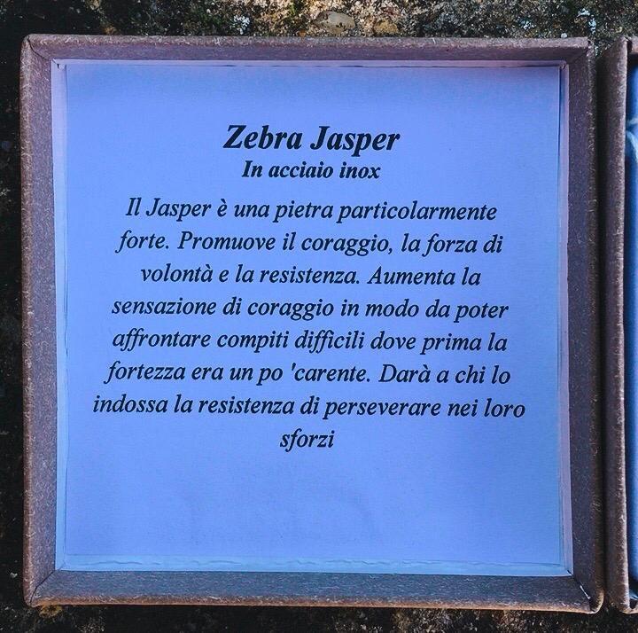 Braccialetto Diaspro Zebra Rosa BDZR01
