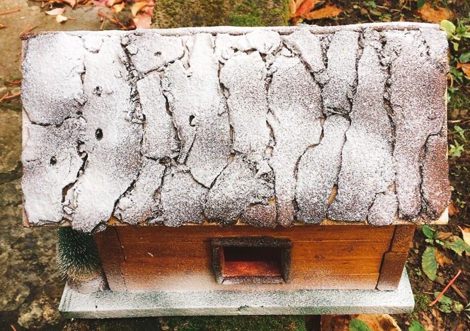 Casa di Babbo Natale NAdd253